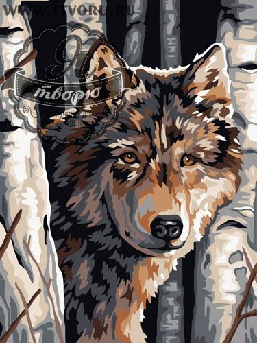 Набор для раскрашивания по номерам Волк Палитра GX6012
