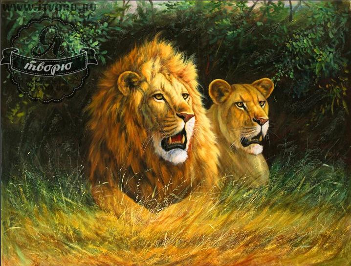 Набор для раскрашивания по номерам Лев и львица Палитра GX6045