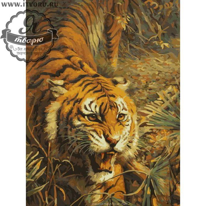 Набор для раскрашивания по номерам Тигр на охоте Палитра G313Раскраски по номерам<br>Набор для раскрашивания по номерам Тигр на охоте от компании Палитра. Тигры - это главные хищные кошки в Азии. У вас появилась возможность раскрасить охотящегося тигра.<br><br>Каждая часть этой картины очень детально прорисована. Внимательный взгляд, открытая пасть, гибкое тело. Такую картину захочется повесить на стену в вашем доме.<br><br>Раскраски по номерам - это настоящее спасение для детей и взрослых, которые пока не умеют полноценно рисовать или не имеют к этому способностей. Закрашивая области с номерами на полотне определенной краской, вы постепенно создаете настоящую картину. По виду раскраска ничем не отличается от оригинала. Теперь вы сможете почувствовать себя настоящим художником, а картину можно будет показывать своим гостям.<br><br>Техника: раскраска по номерам<br>Схема: Цифровая схема<br>Основа: Холст на подрамнике<br>Кол-во цветов: 25<br>Материал: Хлопок<br>Размер: 40х50 см<br>Размер упаковки: 51,5 х 41 х 3 см<br>В состав набора входит: холст, натянутый на подрамник, с нанесенным контуром рисунка, краски, кисти 3 шт. из