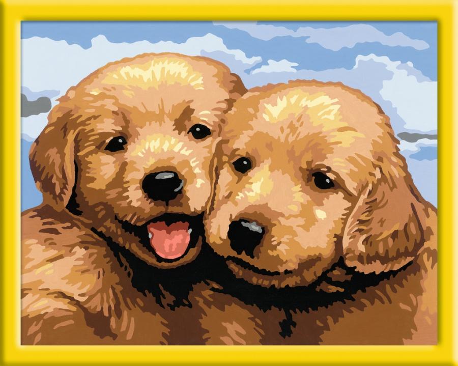 Две собачки картинки для детей