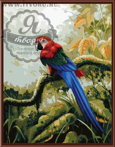 Набор для раскрашивания по номерам Попугай Ара Палитра GX6279Раскраски по номерам<br>Набор для раскрашивания по номерам Попугай Ара от компании Палитра. Если вы увлекаетесь попугаями или птицами, то вам обязательно понравится эта раскраска по номерам на холсте.<br><br>На ней изображен красивый попугай ара, который живет в тропических лесах. Он сидит на ветке, опустив вниз свой красивый длинный синий хвост. Яркая картина на холсте понравится вам и ваших гостям.<br><br>Существует множество наборов для творчества, которые помогают скрасить скучный вечер. Среди них наборы для раскрашивания. Живопись на холсте Палитра Попугай Ара - это набор для раскрашивания по номерам красками. В нашем интернет-магазине Я творю вы также сможете подобрать раскраску, основываясь на ее размере и степени сложности, количестве красок и стоимости. Тут вы найдете раскраску для детей и взрослых, себе или в подарок.<br><br>Техника: раскраска по номерам<br>Схема: Цифровая схема<br>Основа: Холст на подрамнике<br>Кол-во цветов: 27<br>Материал: Хлопок<br>Размер: 40х50 см<br>Размер упаковки: 51,5 х 41 х 3 см<br>В состав набора входит: холст, натянутый на подрамник, с нанесенным контуром рисунка, краски, кисти 3 шт. из