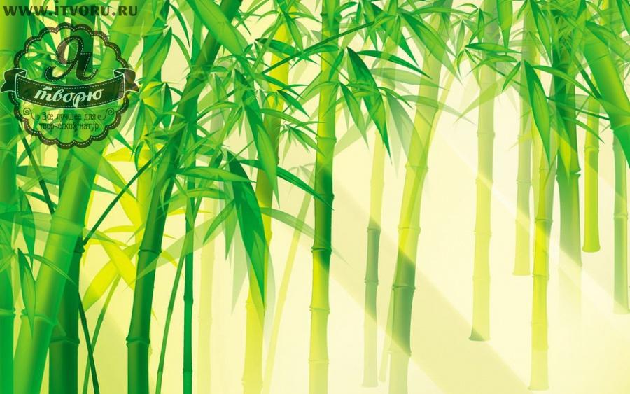 Набор для раскрашивания по номерам Тростник на свету Палитра G249Раскраски по номерам<br>Набор для раскрашивания по номерам Тростник от компании Палитра. Эта удивительная раскраска отлично подойдет для начинающих художников.<br><br>На ней изображен тростниковый лес, который освещается мягким солнцем. Вам понравится нежное сочетание желтого и светло-зеленого цвета на этой раскраске. Такое сочетание цветов сможет успокоить после беспокойного трудового дня современной жизни, сделает ваш дом более светлым. <br><br>Если вы не имеете профессиональных навыков художника, но любите рисовать, то раскраски по номерам станут вашим спасением. Теперь вы можете почувствовать себя настоящим живописцем, которые создает художественные шедевры. Рисуя по номерам, вы развиваете свои творческие навыки и восприятие цвета, мелкую моторику рук и логическое мышление, внимательность и воображение. Кроме того, это очень интересное и увлекательное занятие.<br><br>Техника: раскраска по номерам<br>Схема: Цифровая схема<br>Основа: Холст на подрамнике<br>Кол-во цветов: 12<br>Материал: Хлопок<br>Размер: 40х50 см<br>Размер упаковки: 51,5 х 41 х 3 см<br>В состав набора входит: холст, натянутый на подрамник, с нанесенным контуром рисунка, краски, кисти 3 шт. из
