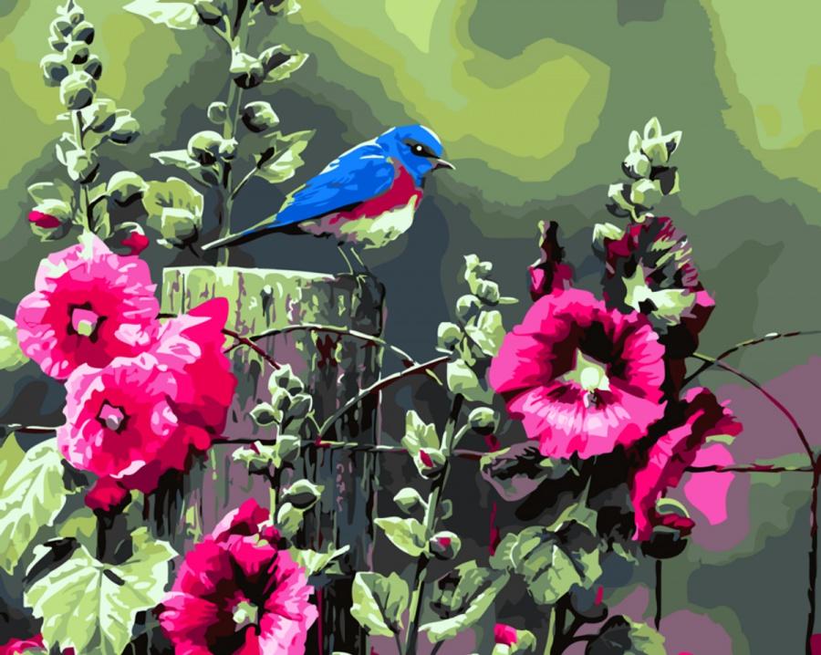 что, берите птица с цветком картинки того, степпер