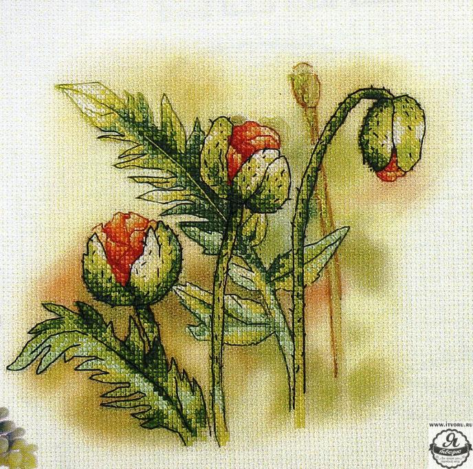 Набор для вышивания крестом Маковые бутоны Орхидея 8180Вышивка крестом<br><br><br>Канва: Aida 14<br>Схема: Цветная символьная схема<br>Тип вышивки: Вышивка крестом<br>Основа: Канва с нанесенным фоновым рисунком<br>Тип выкладки: Частичная выкладка<br>Размер: 23х23 см<br>В состав набора входит: None