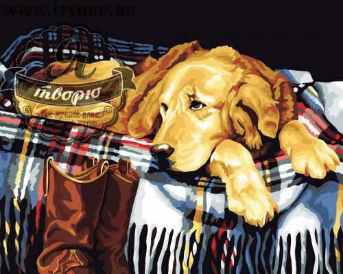 Набор для раскрашивания по номерам Верный друг Палитра GX6011Раскраски по номерам<br>Набор для раскрашивания по номерам Верный друг от компании Палитра. Если вы любите собак, то вам определенно понравится эта раскраска по номерам.<br><br>На ней изображен милый пес, который лежит на своем любимом месте в ожидании хозяина. Готовая картина может стать прекрасным подарком всем собачникам. Собаки - самые проверенные друзья людей, поэтому такая картина станет замечательным украшением вашего дома.<br><br>Раскраски по номерам - это настоящее спасение для детей и взрослых, которые пока не умеют полноценно рисовать или не имеют к этому способностей. Закрашивая области с номерами на полотне определенной краской, вы постепенно создаете настоящую картину. По виду раскраска ничем не отличается от оригинала. Теперь вы сможете почувствовать себя настоящим художником, а картину можно будет показывать своим гостям. Вы также можете подарить эту картину близким.<br>Пожалуйста, обратите внимание, рама в комплект набора не входит. Краски не требуют смешивания.<br><br>Техника: раскраска по номерам<br>Схема: Цифровая схема<br>Основа: Холст на подрамнике<br>Кол-во цветов: 24<br>Материал: Хлопок<br>Размер: 40х50 см<br>Размер упаковки: 51,5 х 41 х 3 см<br>В состав набора входит: холст, натянутый на подрамник, с нанесенным контуром рисунка, краски, кисти 3 шт. из